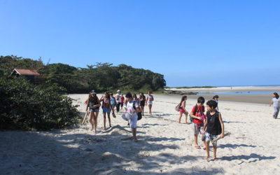 Praia de Itaguaré é um dos últimos locais de Mata Atlântica preservada no Litoral